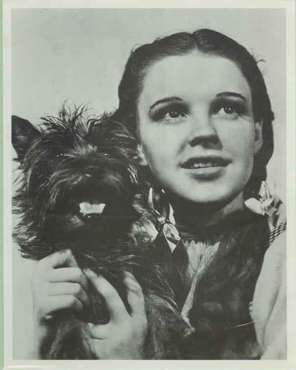 as_dorothy_with_dog_toto_the_wizard_of_oz.jpg