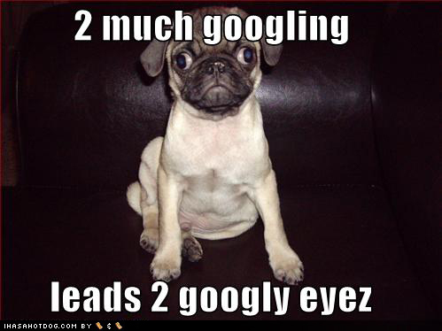 http://nexuslex.files.wordpress.com/2009/01/funny-dog-pictures-googly-eyes-googling-google.jpg