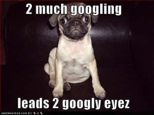 funny-dog-pictures-googly-eyes-googling-google
