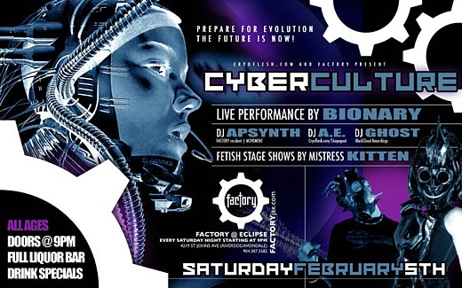 cyber-culture