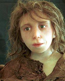 220px-Neanderthal_child