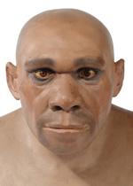 neanderthal-man-21386-1